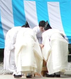tokyo, meiji shrine scene