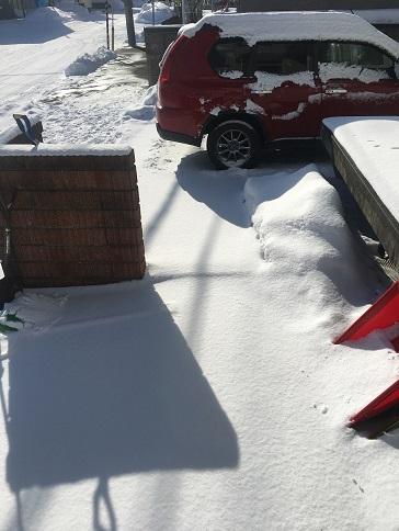 snowy sapporo 24.1 (1)