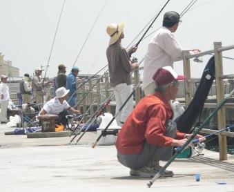 fishing harbour kobe (2)