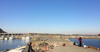 fishing oiso harbour