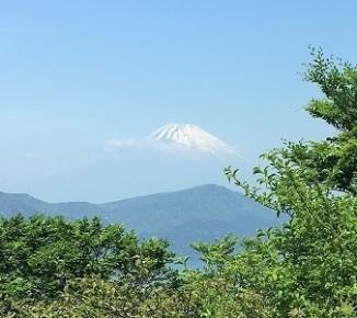 Fuji 2 (8)