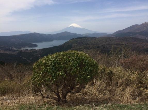 Fuji 3 (6)