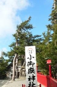 going Fujisan (7)