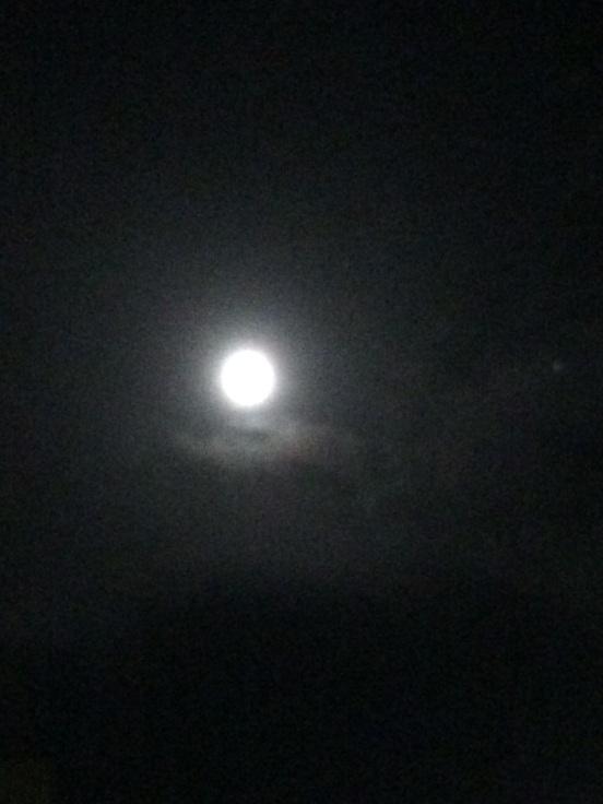 .. moon (4)