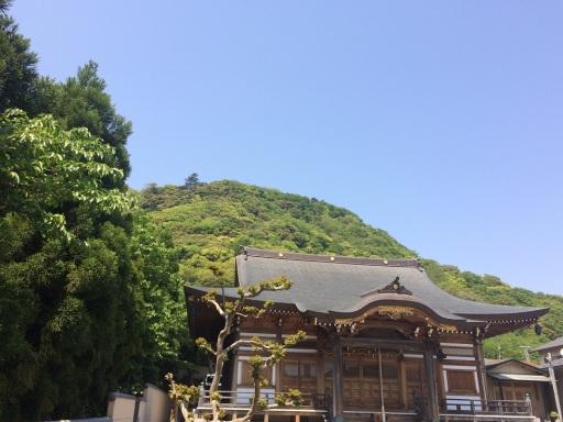 korai shrine o'mikoshi (3)
