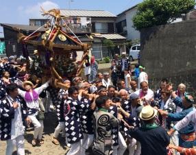 oiso, o'mikoshi diff. shrines (4)